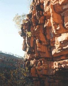 kimberleyrocks_2.jpg